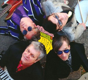 Fleshtones: Wheel of Talent